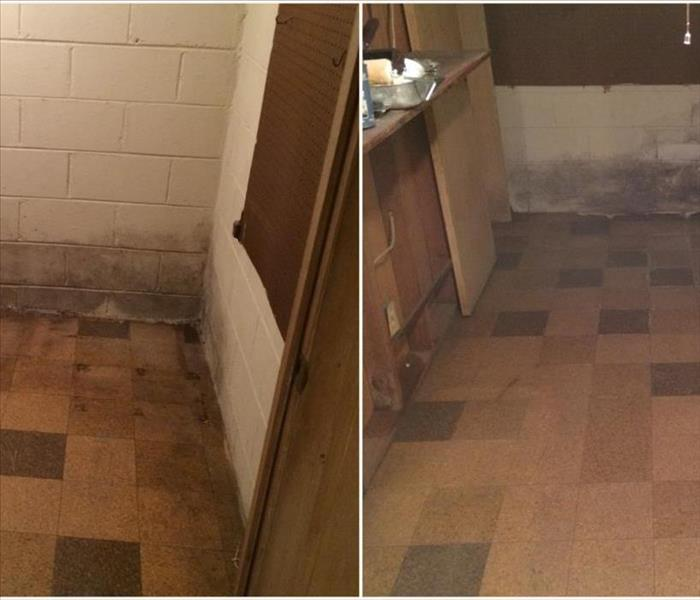 Mold Remediation in Oak Park, MI  Before