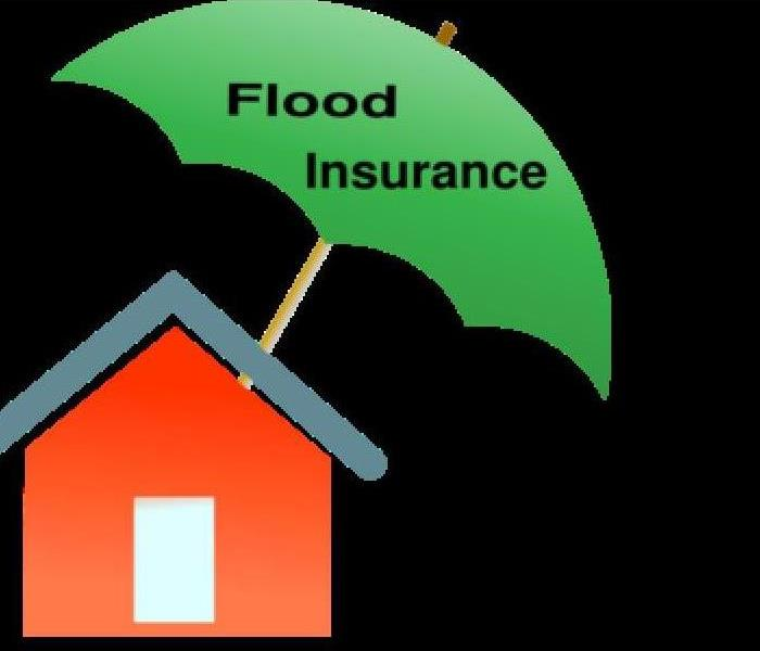 Water Damage Water Damage VS Flood Damage Coverage: Knowing the Difference
