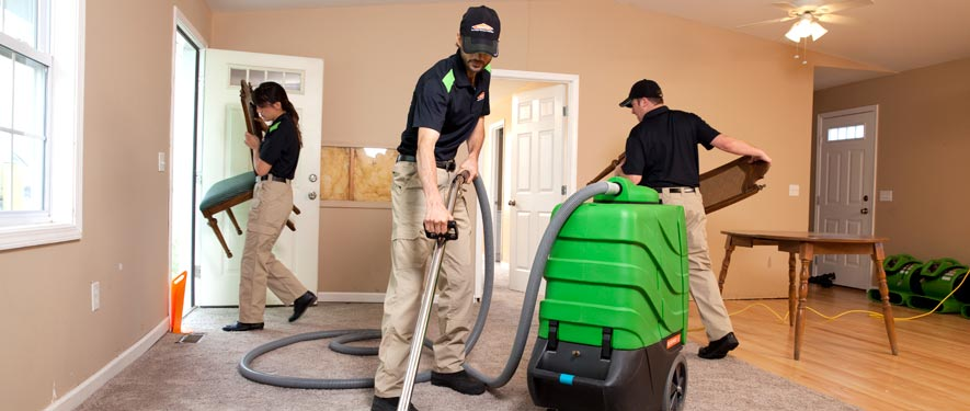 Ferndale, MI cleaning services